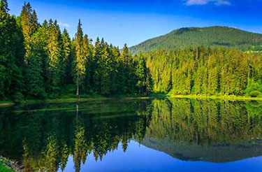 Still lake in a forest reflecting deep blue sky and verdant green trees, large hill in the background. Peaceful and warm.